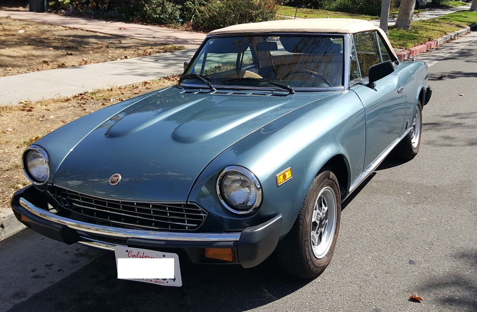 1981 Fiat 124 Spider Spider 1981 FIAT SPIDER 2000, BEAUTIFULLY RESTORED. AN ABSOLUTE GEM!!