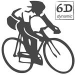 6D dynamic