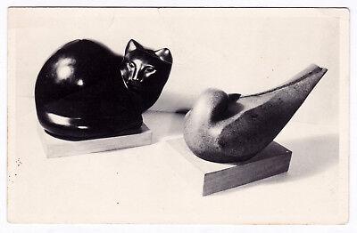 RPPC Montclair Art Museum NJ Cat Marble Cleo Hartwig Sea Bird Henelt Postcard