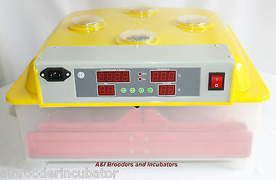 LARGE 144 Quail Egg Digital Automatic Turner INCUBATOR Local USA Dealer !!