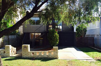 Renovated Pet Friendly Open Plan Home Windsor Brisbane North East Preview
