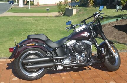 Harley Davidson Fatboy Special 1690