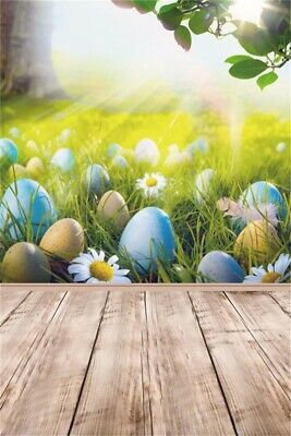 Easter Egg Grass Green Spring Border Photography Background Props Vinyl Photo