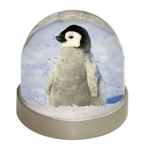 SNOW DOME - BABY PENGUIN - Wildlife Glitter Globe Photo Xmas (can be customised)