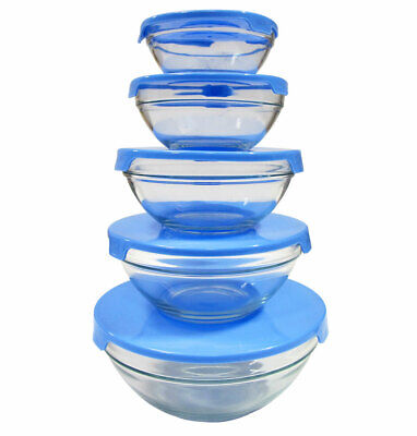 10 Pcs Glass Lunch Bowls Healthy Food Storage Containers Set With Blue Lids Blue Food Storage