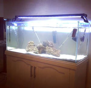 450 litre 4ft Aquarium (Marine or Freshwater) Hyde Park Unley Area Preview
