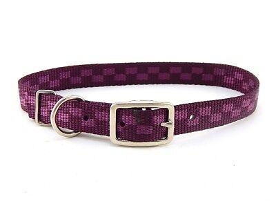 """HAMILTON ST Nylon Dog Collar, 22"""" x 3/4"""", Wine Checkerboard"""