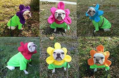 French Bulldog Boston Terrier Pug Dog Froodies Hoodies Cosplay Costume Flower](Costume Pug)