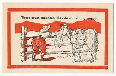 """""""These Great Expanses"""" Vintage Fat Lady Comic Postcard"""