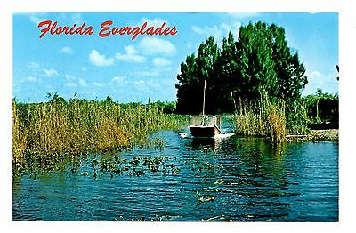 Florida Everglades Air Boat Rides Postcard Inspiring Adventure Vintage Unposted