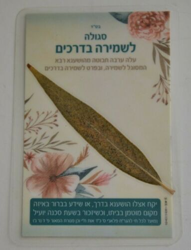 Amulet judaica Unique rare Practical Kabbalah קמיע מיוחד ערבה לשמירה ולהצלחה