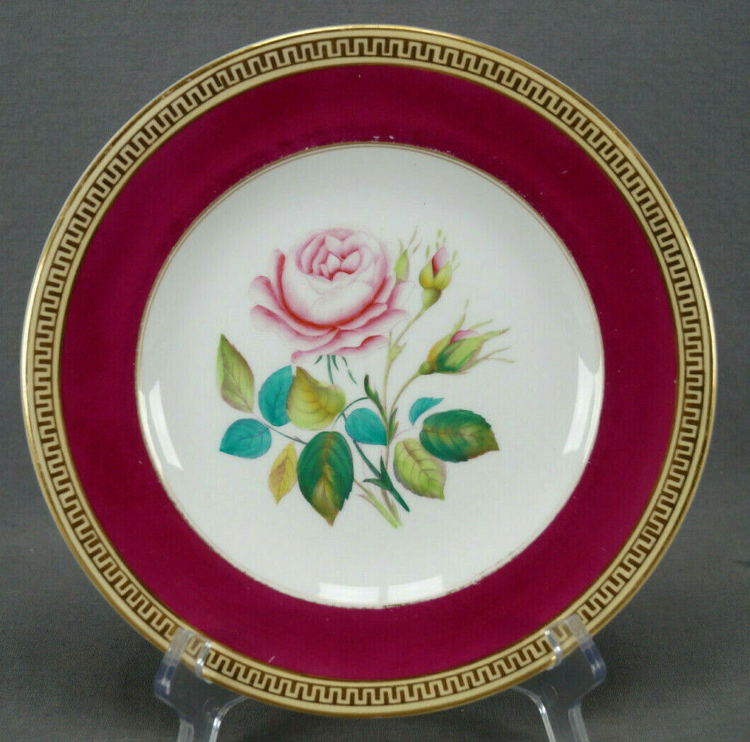 Mid 19th Century British Hand Colored Pink Rose Botanical Porcelain Plate