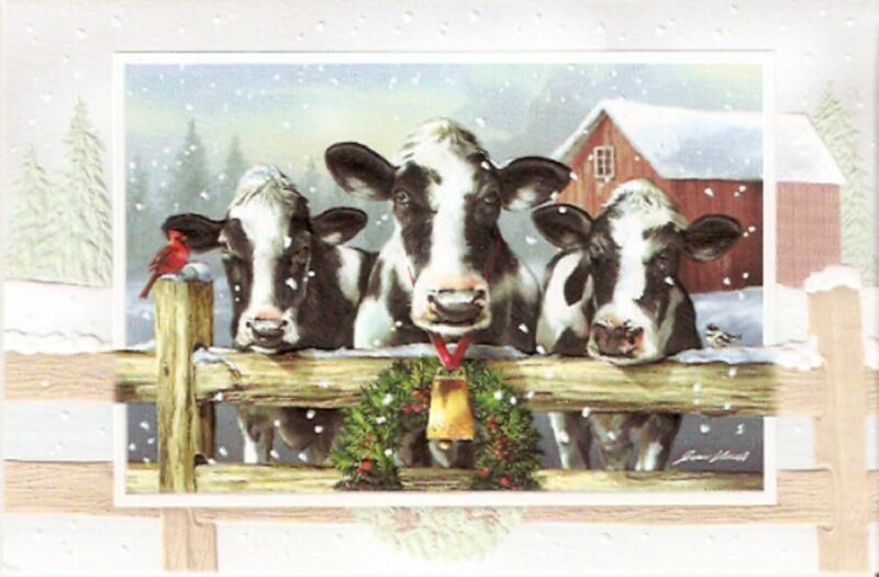 Cow Holstein Embossed Christmas Cards Box of 16 Holiday Holsteins*