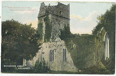 Muckross Abbey, Killarney, 1908 postcard