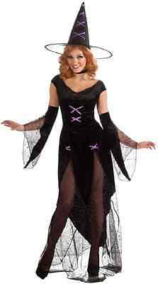 Madonna of Salem Witch Wicked Fancy Dress Up Halloween Sexy Adult Costume