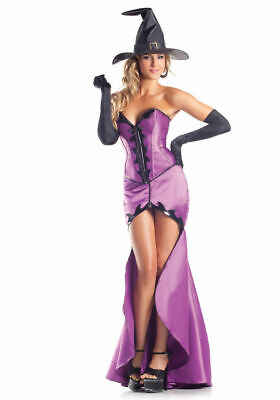 Be Wicked Hokus Pokus Heartthrob Costume Sexy Purple Witch Corset Fancy Dress - Corset Witch Costume