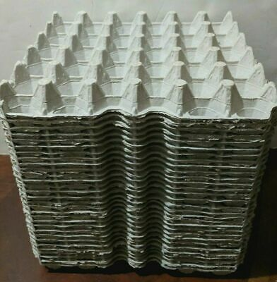 Lot Of 30 Egg Carton Flats Trays-holds 30 - Cricket Reptile Craft Soundproof