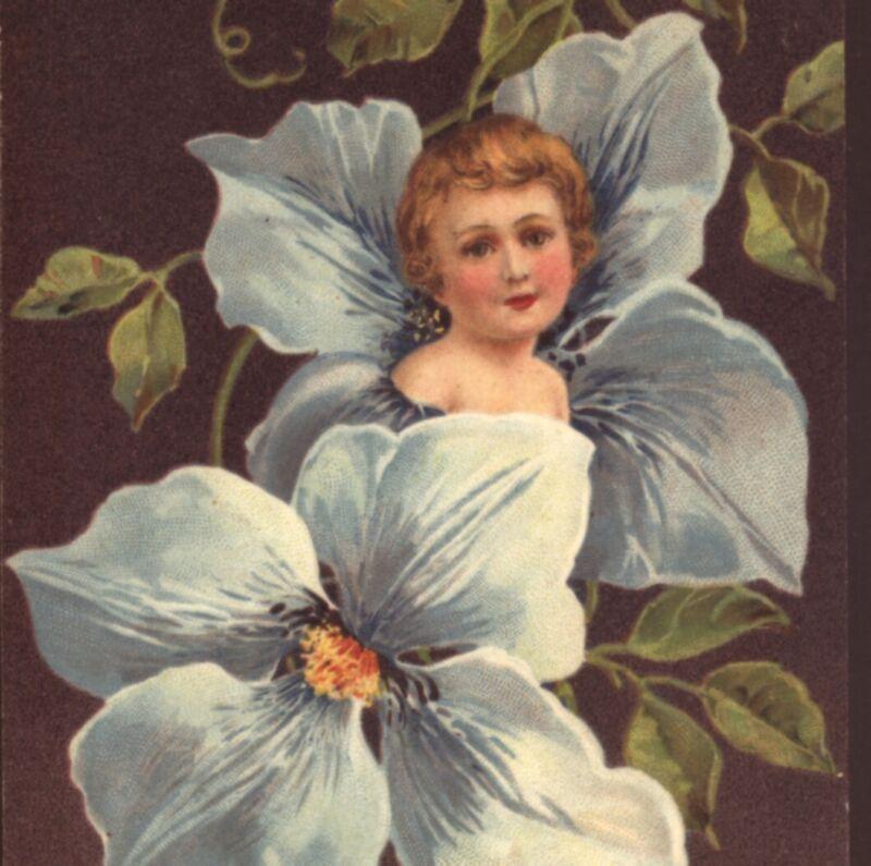 UNCOMMON...! FANTASY CLEMATIS FLOWER FAIRY,PFB,EMBOSSED,VINTAGE POSTCARD
