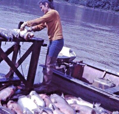1972 ALASKA Inuit Eskimo Girl Cleaning Trout Fish Kodak Ektachrome 35mm Slide G2
