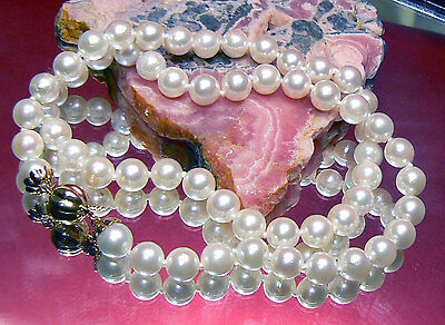 AKOYA SALTWATER WHITE PEARL CHOCKER NECKLACE 14K GOLD AAA 6mm PEARLS 15.5