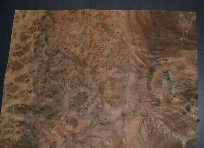 Walnut Burl Raw Wood Veneer Sheets 14 X 14 142nd Thick   4711-15