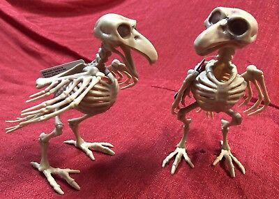 Set Of 2 HALLOWEEN SKELETON BIRDS Haunted House Bones Decor Gag Prop Dead Raven