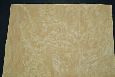 Ash Burl Raw Wood Veneer Sheets 12.5 X 18.5 Inches 142nd   G7868-2