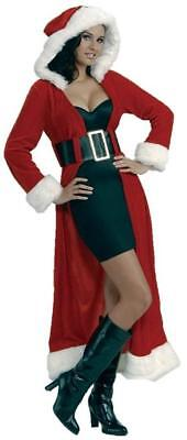 Enchanting Miss Christmas Claus Holiday Fancy Dress Up Halloween Adult Costume