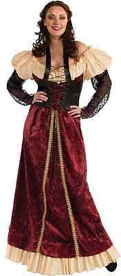 Dungeon Damsel Renaissance Wench Fancy Dress Halloween Plus Size Adult Costume
