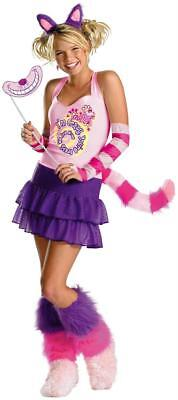 Cheshire Cat Alice Wonderland Disney Disguies Dress Up - Disney Cheshire Cat Kostüm