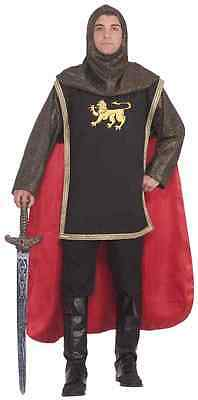Medieval Knight Royal Guard Chainmail Fancy Dress Up - Royal Guard Kostüm