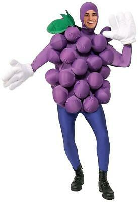 Purple Grapes Food Fruit Foodies Fancy Dress Up Halloween Unisex Adult Costume](Halloween Costume Grapes)