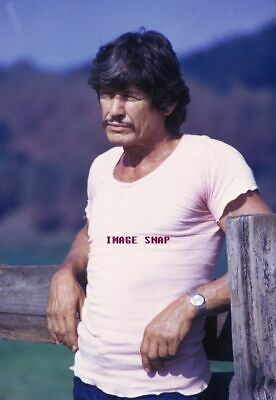 CHARLES BRONSON 60s 70s Sixties Seventies Poster Wall Print 24 x 36 (inch) 1
