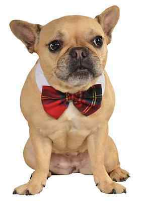 Plaid Bow Tie Christmas Holiday Festive Halloween Pet Dog Cat Costume Accessory Holiday Plaid Bow Tie