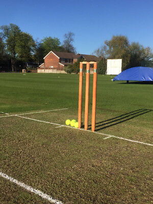 ND Wooden Cricket 6x Stumps & 4x Bails Wicket With Bag