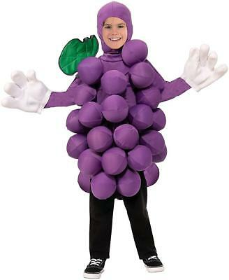 Purple Grapes Food Fruit Foodies Fancy Dress Up Halloween Unisex Child Costume - Grape Halloween Costumes