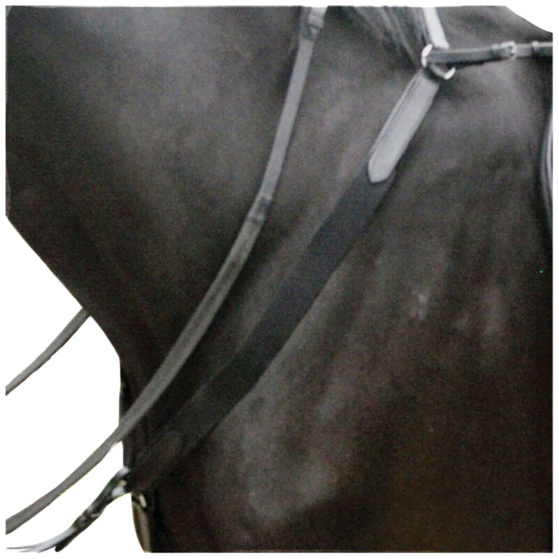 Kincade Elasticated Saddlery Breast Plate - Black All Sizes