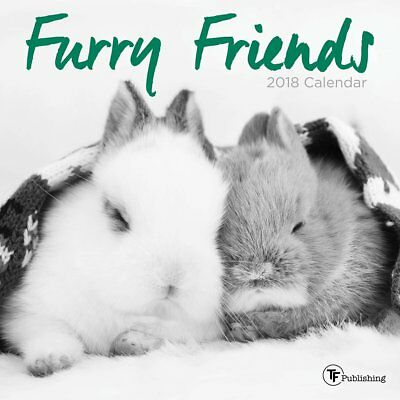 Furry Friends   2018 Mini Wall Calendar 7X7   Brand New   Cute Animals 751304