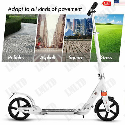Scooters - Adult Scooter