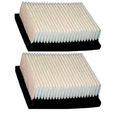 Nobles Dust Panel Vacuum Filter - Quantity 2 - Part 1037821 - Replacement