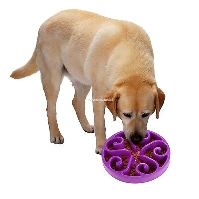 Pet Dog Cat Puppy Anti Gulping Slow Down Food Dish Bowl Feeder Flower Design