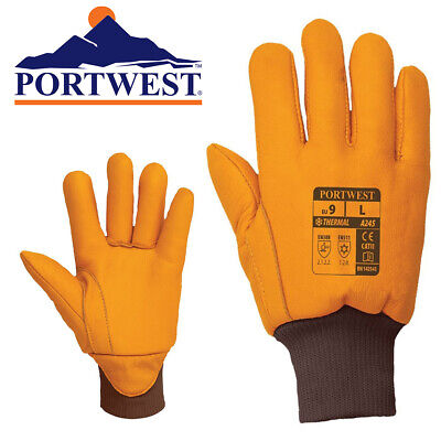 Portwest Antarctic Cold Condition Insulated Leather Work Gloves Sizes L-xl