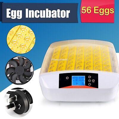 Digital Temperature Control 56Eggs Incubator 110V Automatic Turning Hatcher FV88
