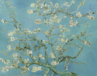 Almond Tree Vincent Van Gogh Painting Canvas Print Floral Wall Art Small 8x10, used for sale  North York