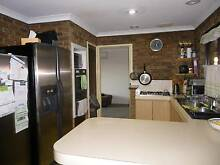Murdoch 42Beckley Cir,Spac Fam Hm 4x2+St Top Locn $470pw Av 6Feb Leeming Melville Area Preview
