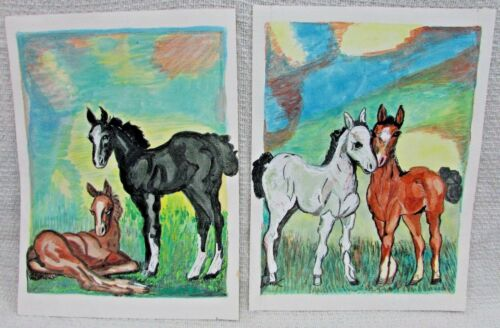 Two Horse Colt Foal Vintage 12x16 Original Old 1970