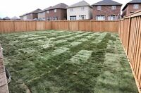 Removal and Installation of SOD