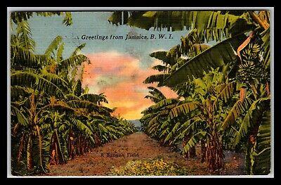 GP GOLDPATH: JAMAICA POST CARD 1953 AIR MAIL _CV676_P25