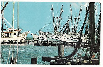 SHRIMP BOAT FLEET  Postcard Gulf Coast TX TEXAS, Koppel, Lisa Meceal