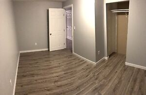 Two bedroom basement available immediately. Edmonton Edmonton Area image 6